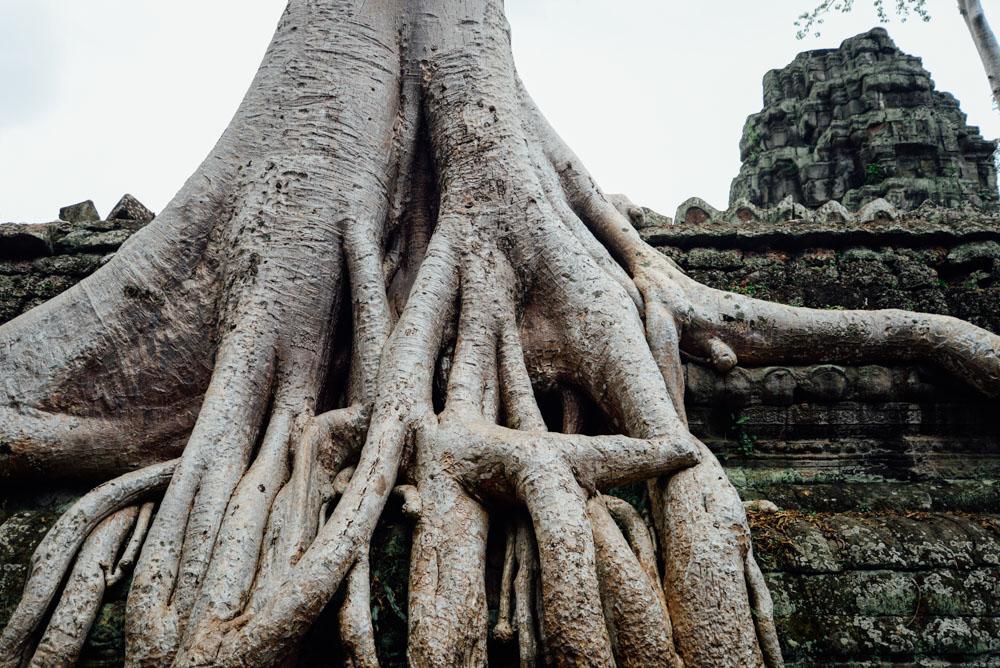 cambodia-17.jpg