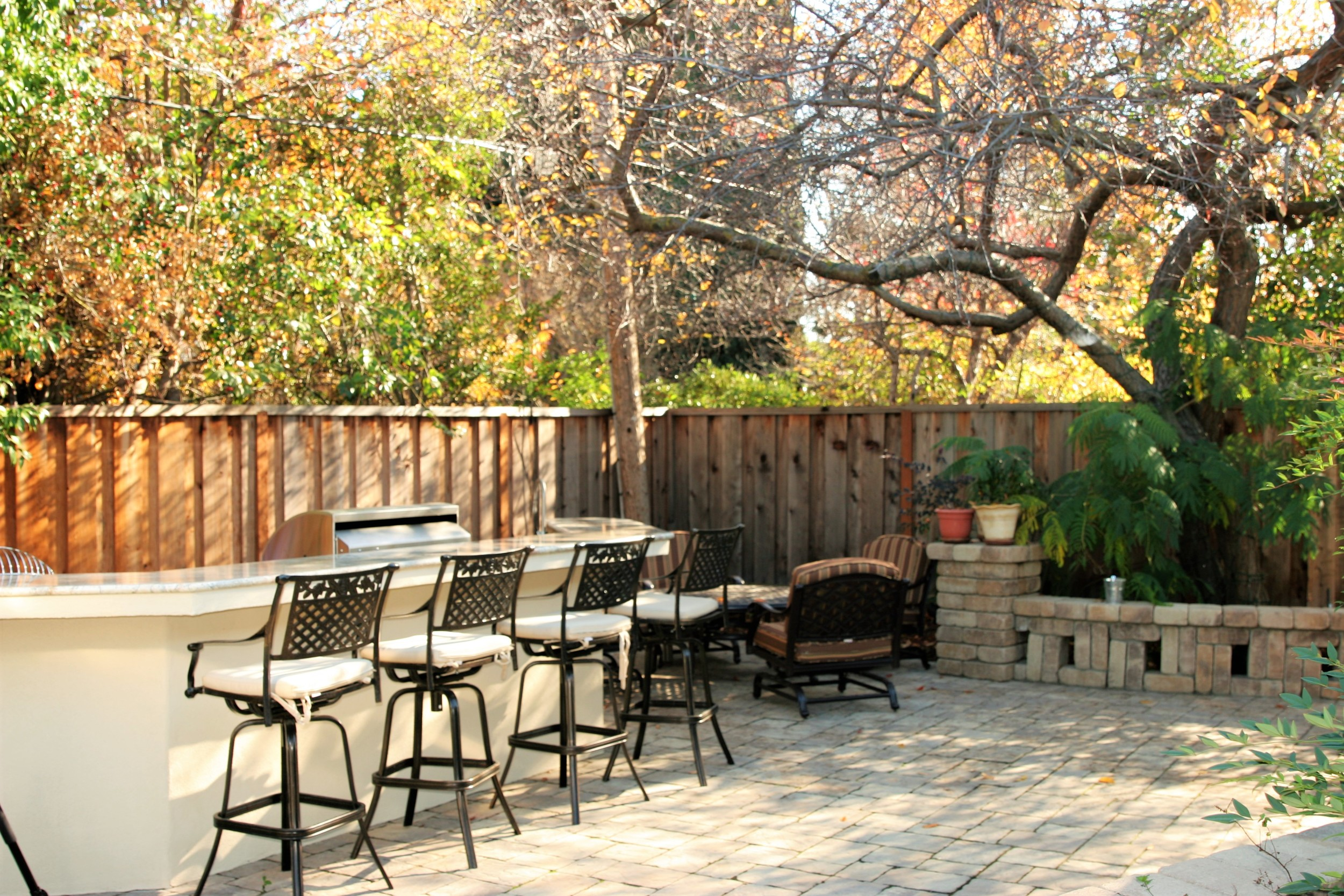 Cupertino Backyard
