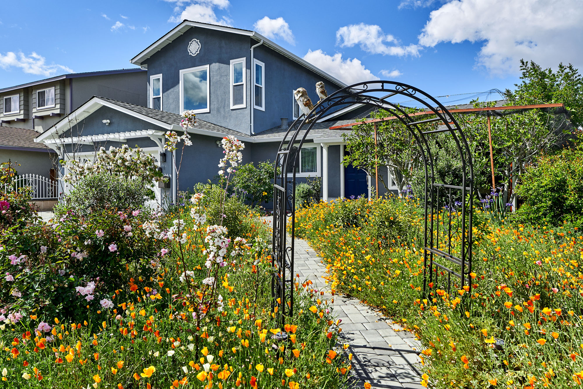 Thriving front yard landscape which helped anchor the home.