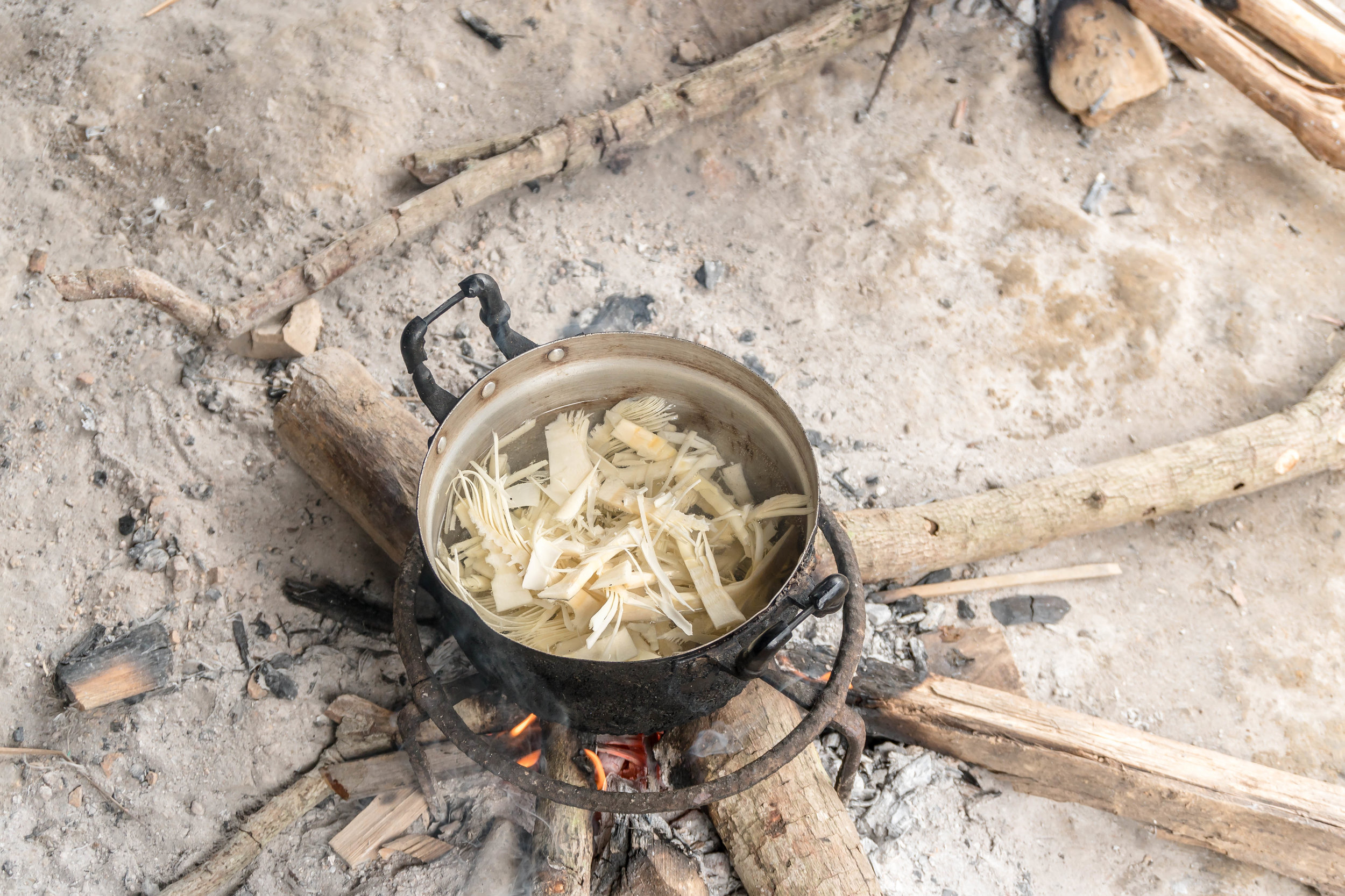 bamboo shoots boil over the fire