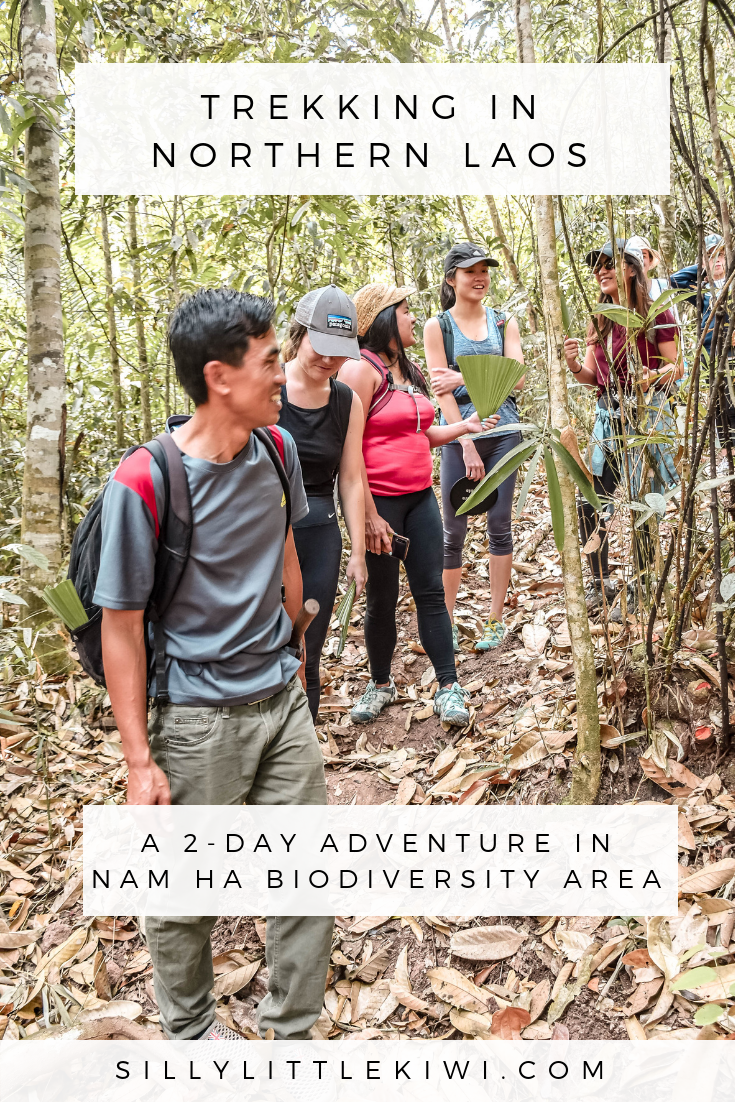 trekking in northern Laos: a 2-day adventure in nam ha biodiversity area