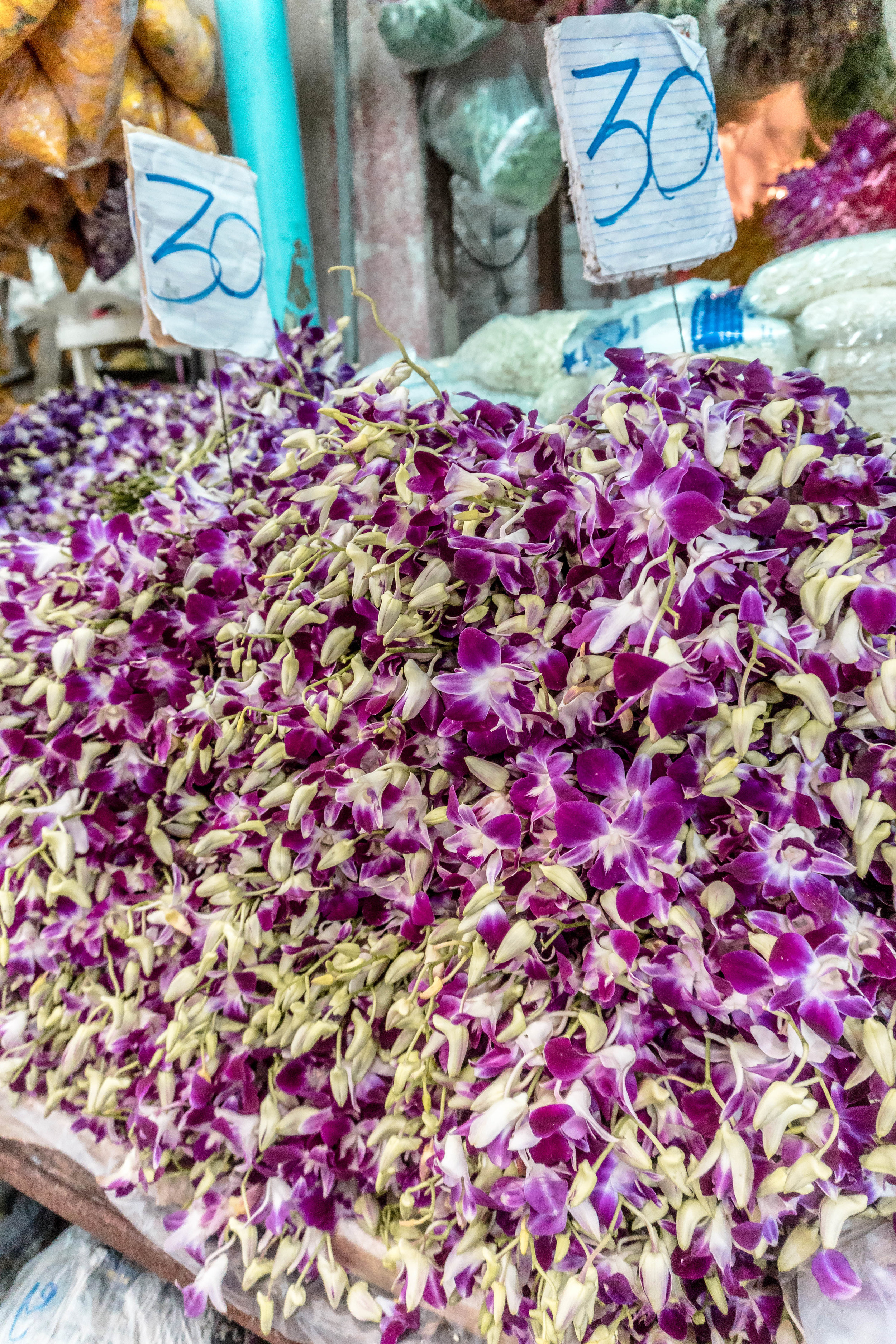 FLOWERS AT THE FLOWER MARKET NEXT DOOR TO THE ONION HOSTEL