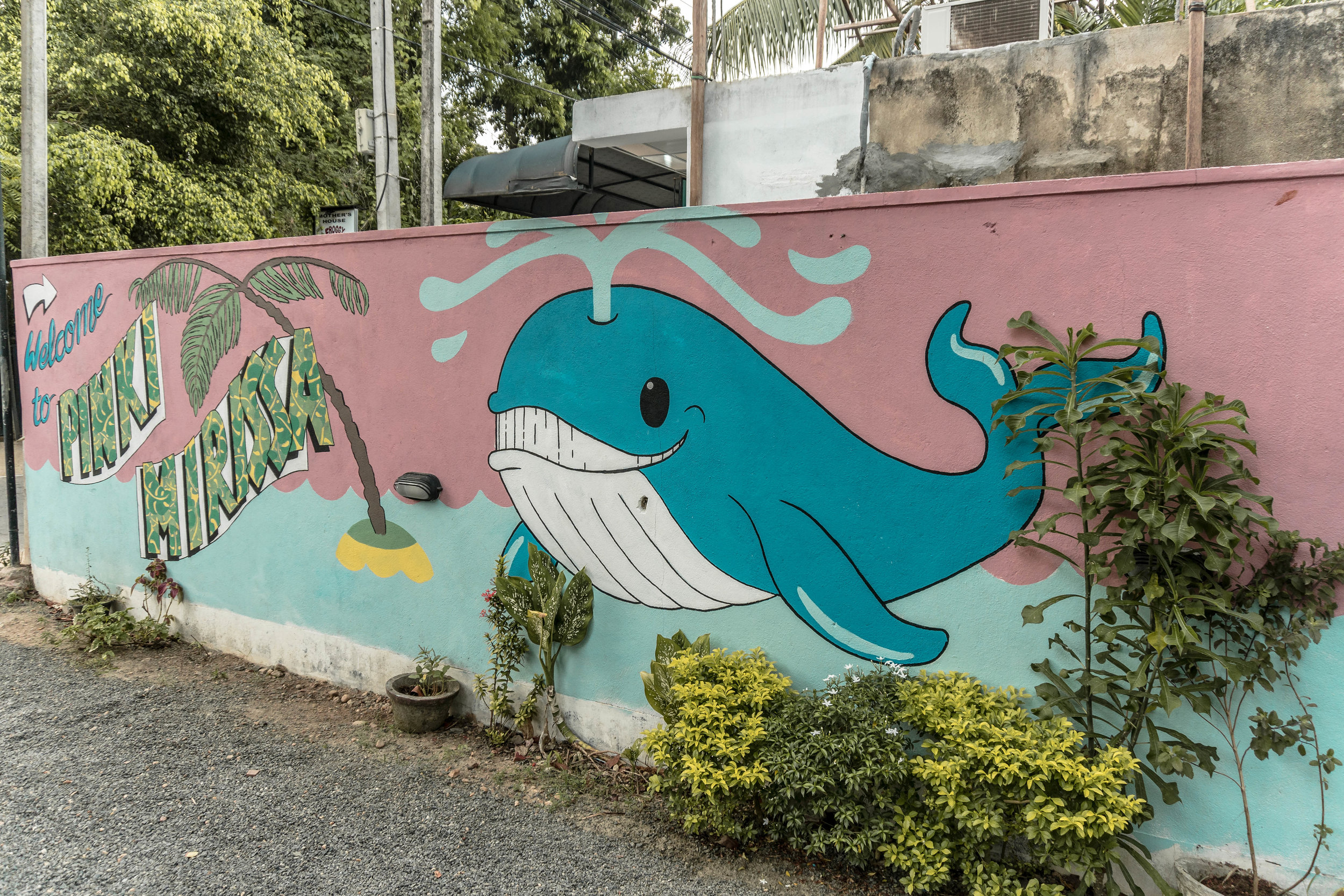A STREET ART GUIDE TO MIRISSA, SRI LANKA: WHERE TO FIND THE COOLEST MURALS IN MIRISSA