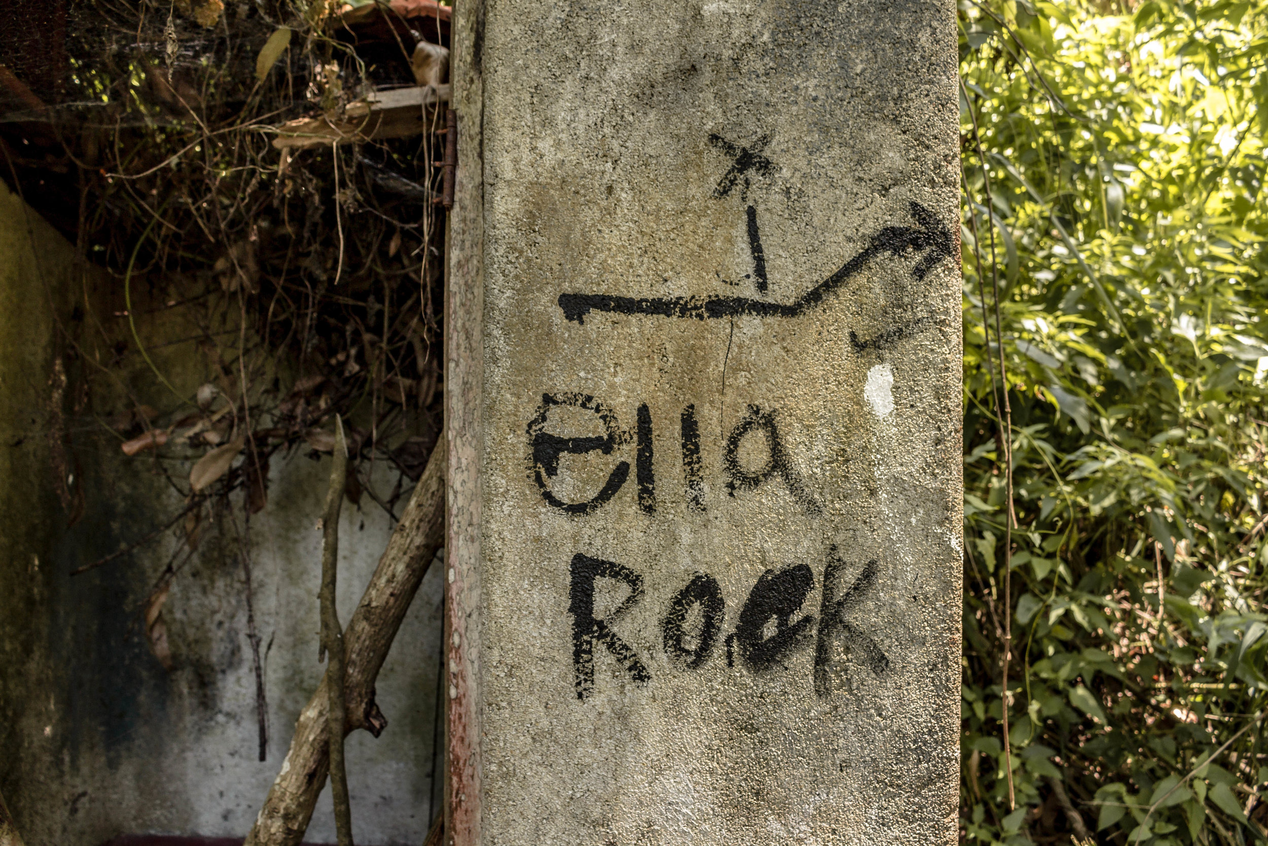HOW TO HIKE ELLA ROCK WITHOUT A GUIDE