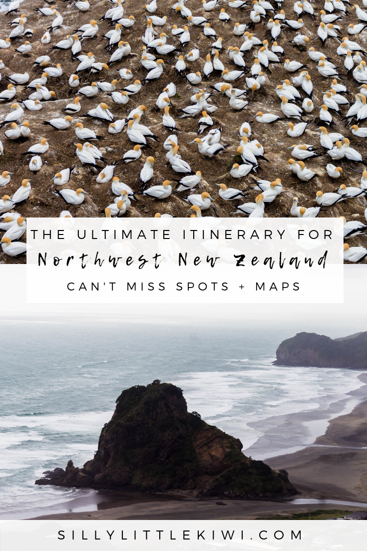 the ultimate guide for a road trip on New Zealand's Northwest Coast: how to get there, where to stay, + the spots you can't miss #newzealand #newzealandtravel #whattodoinnewzealand