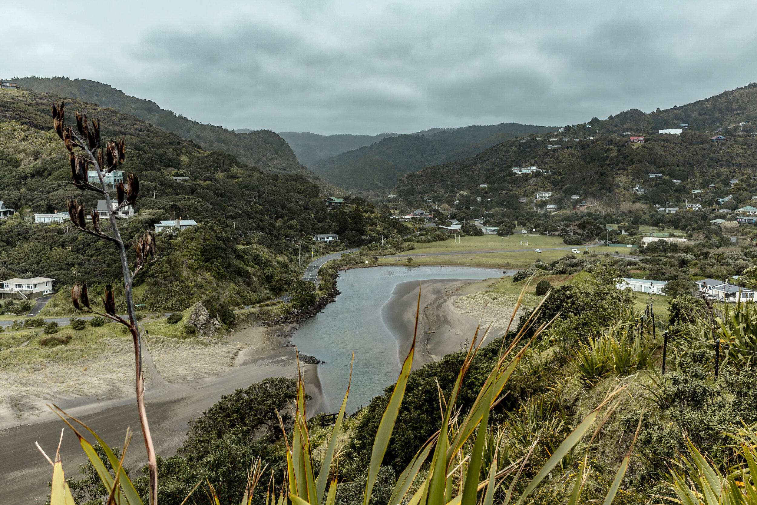 the ultimate guide for a road trip on New Zealand's Northwest Coast: how to get there, where to stay, + the spots you can't miss