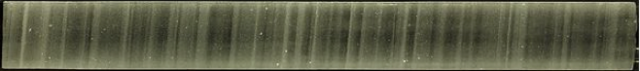 Ice core at 1,837m depth with clearly visible annual layers