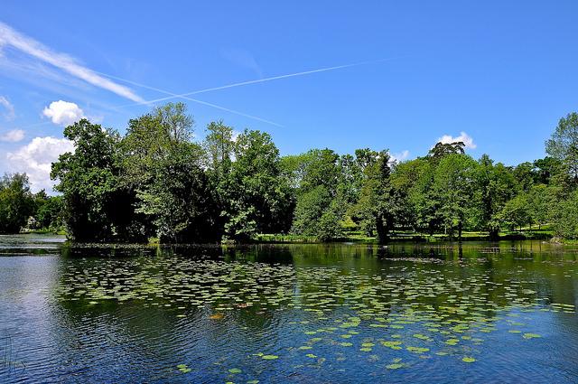 The gardens at Stowe. Photograph by Martin Pettitt