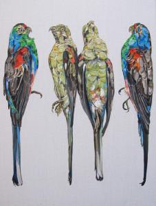 Paradise Parrots