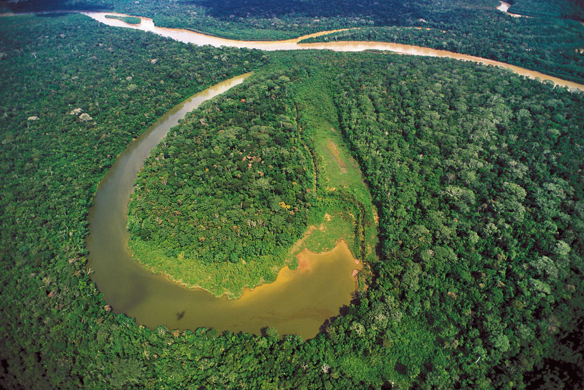 Aerial view of a Manu oxbow lake Photograph: Andre Baertschi / wildtropix.com
