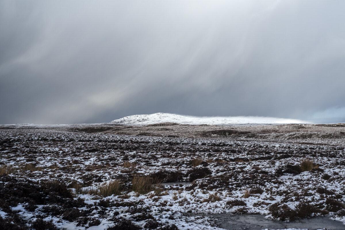 view across pentland road on moor.jpg