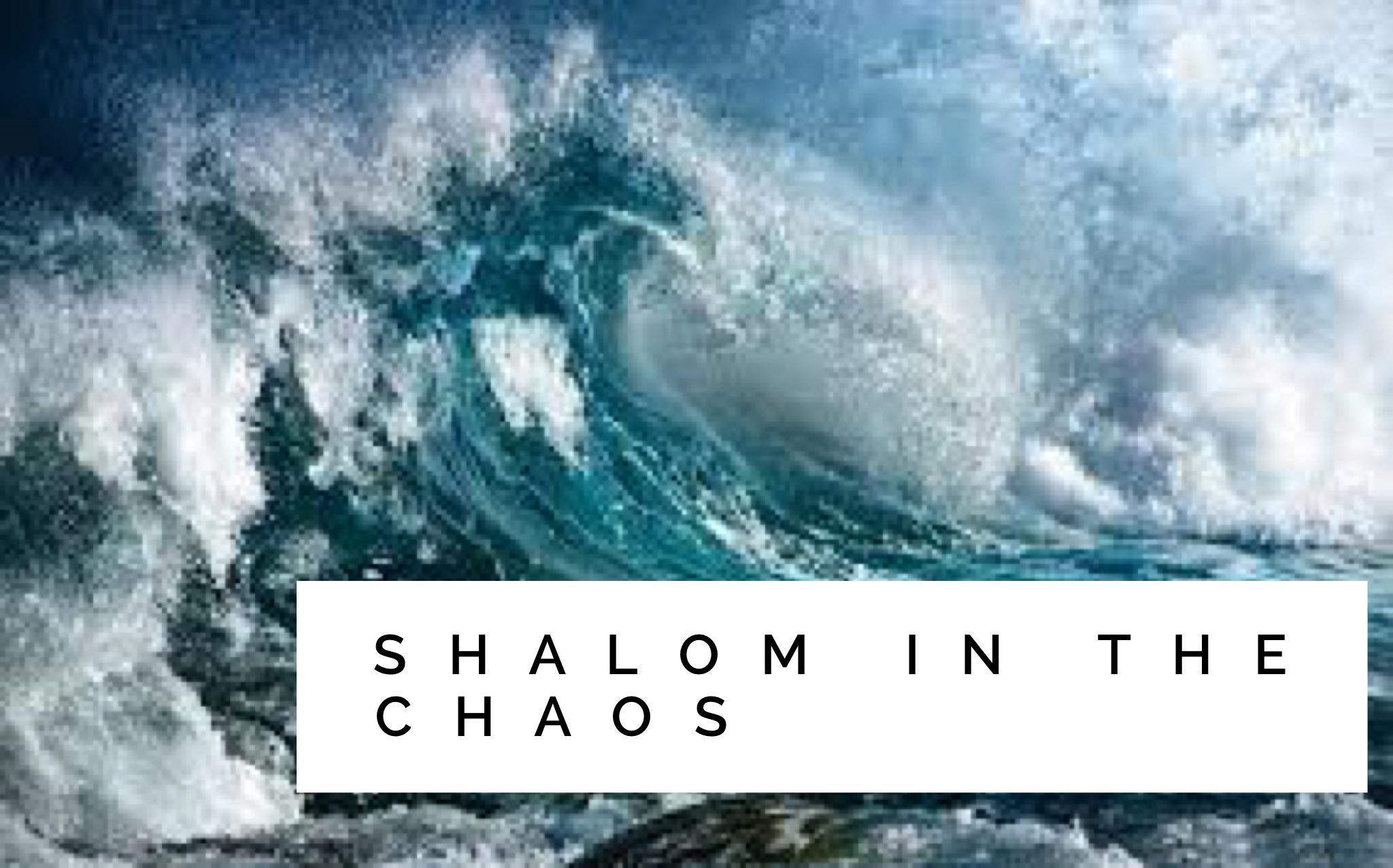 shalom in the choas.jpg