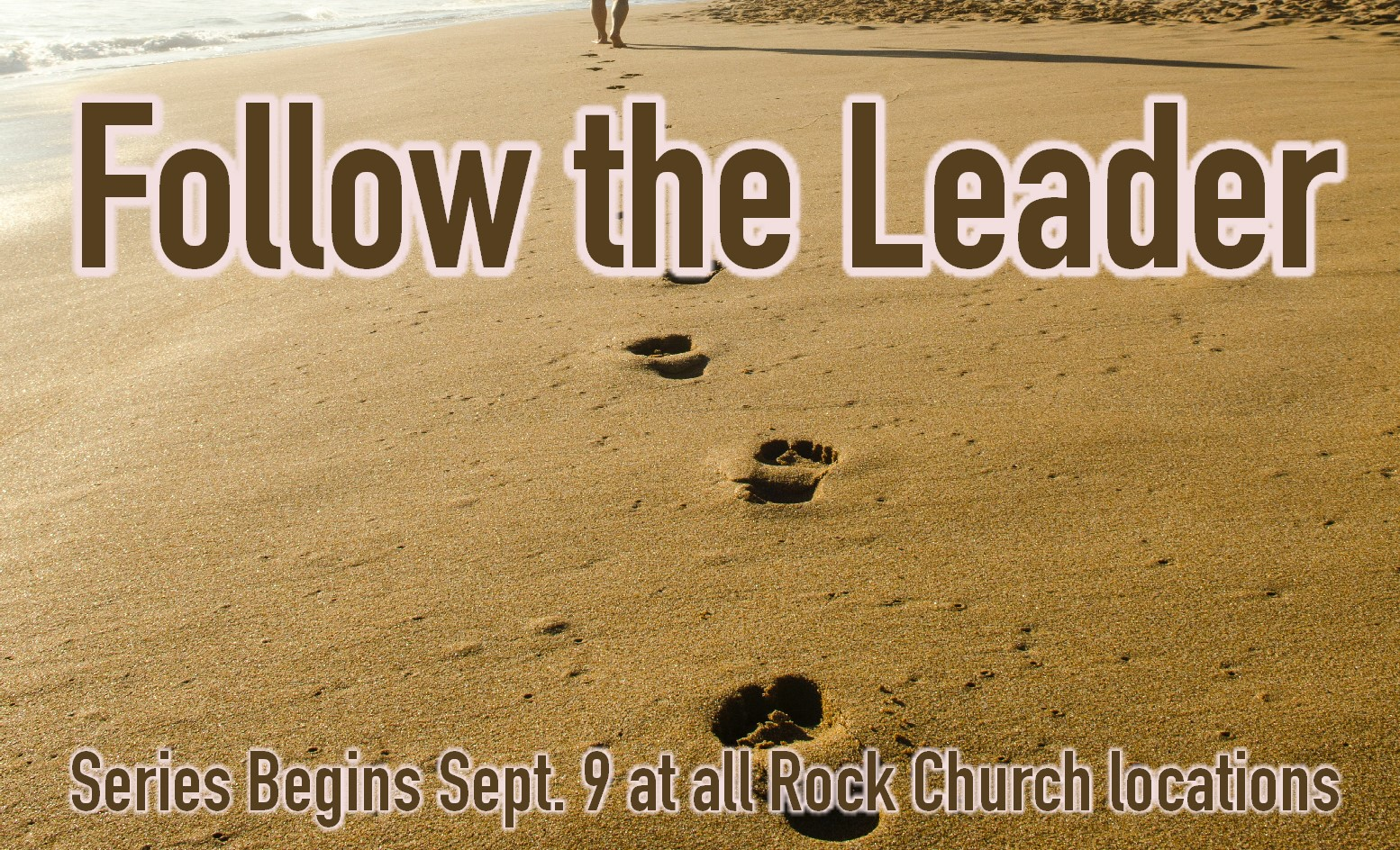 Follow the leader graphic.jpg