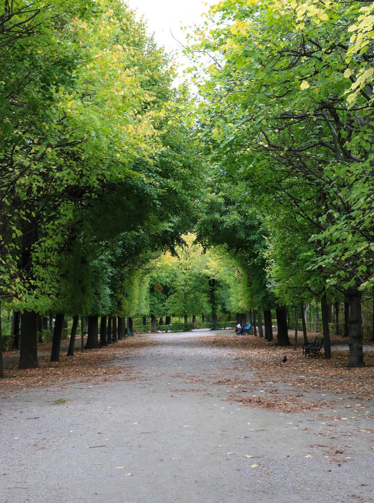 Gardens of Schönbrunn Palace