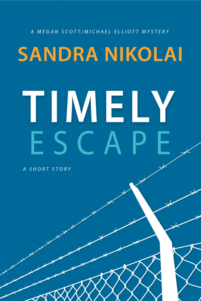 Timely Escape , series short story