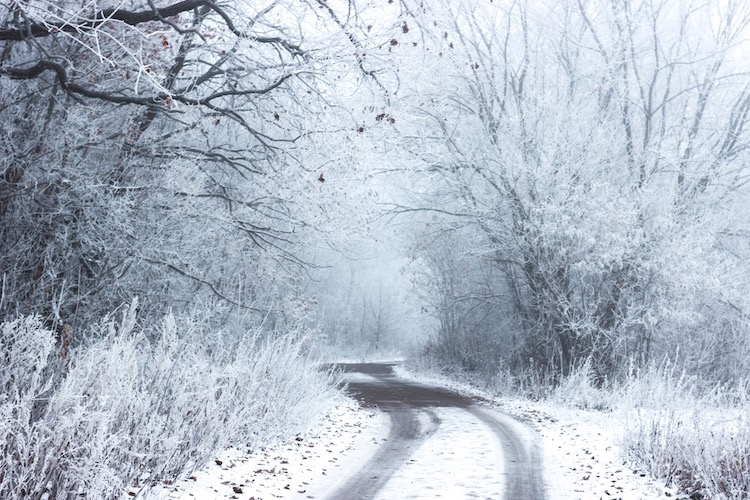 Icy_Silence_blog-post.jpg