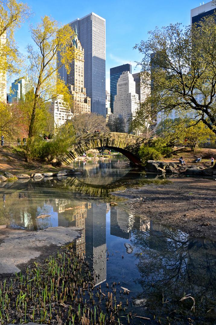 Gapstow Bridge / Central Park