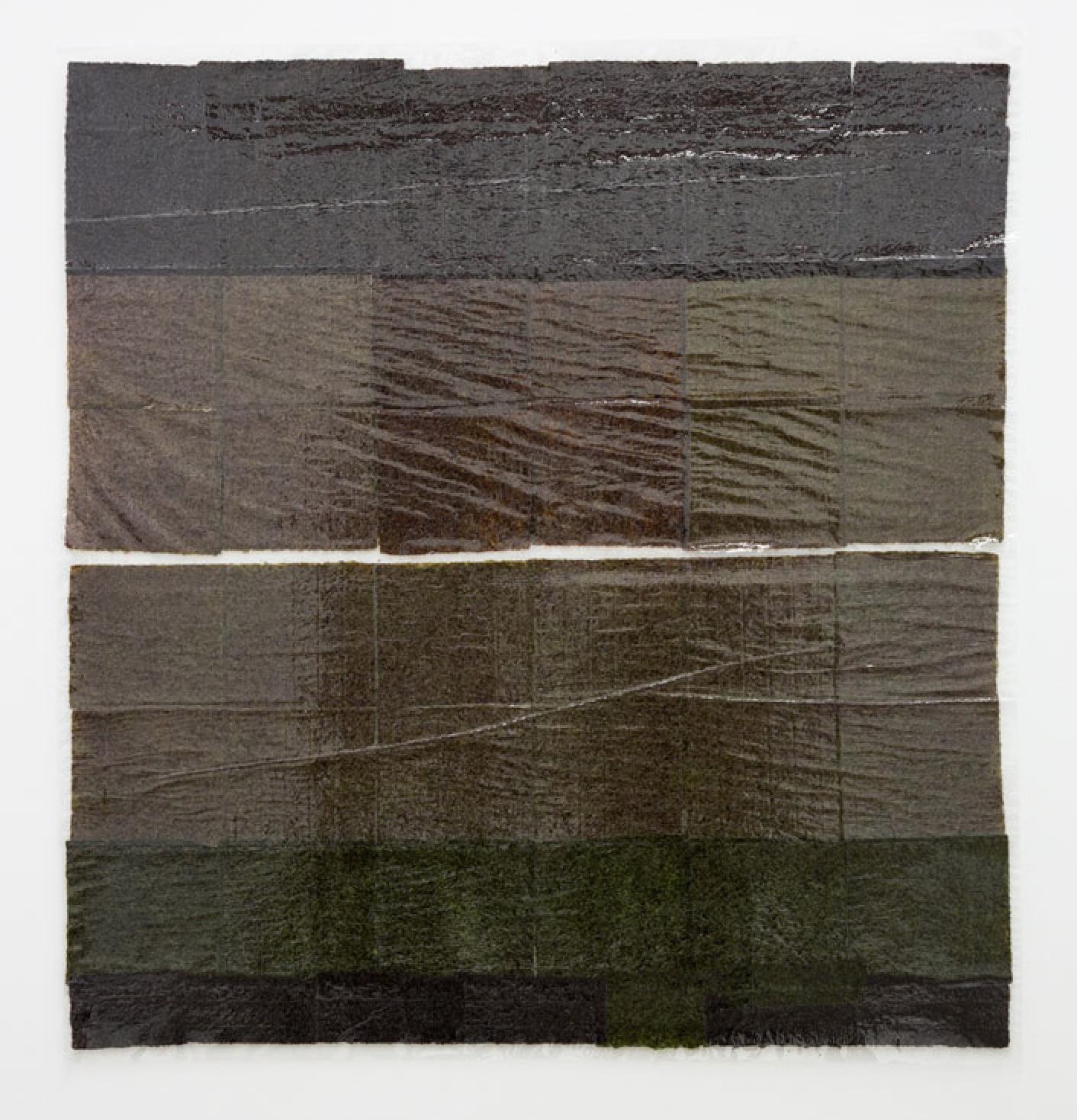 "Anne Libby, ""Lily Lamellar,"" 2015, seaweed, plexiglass, laminate"