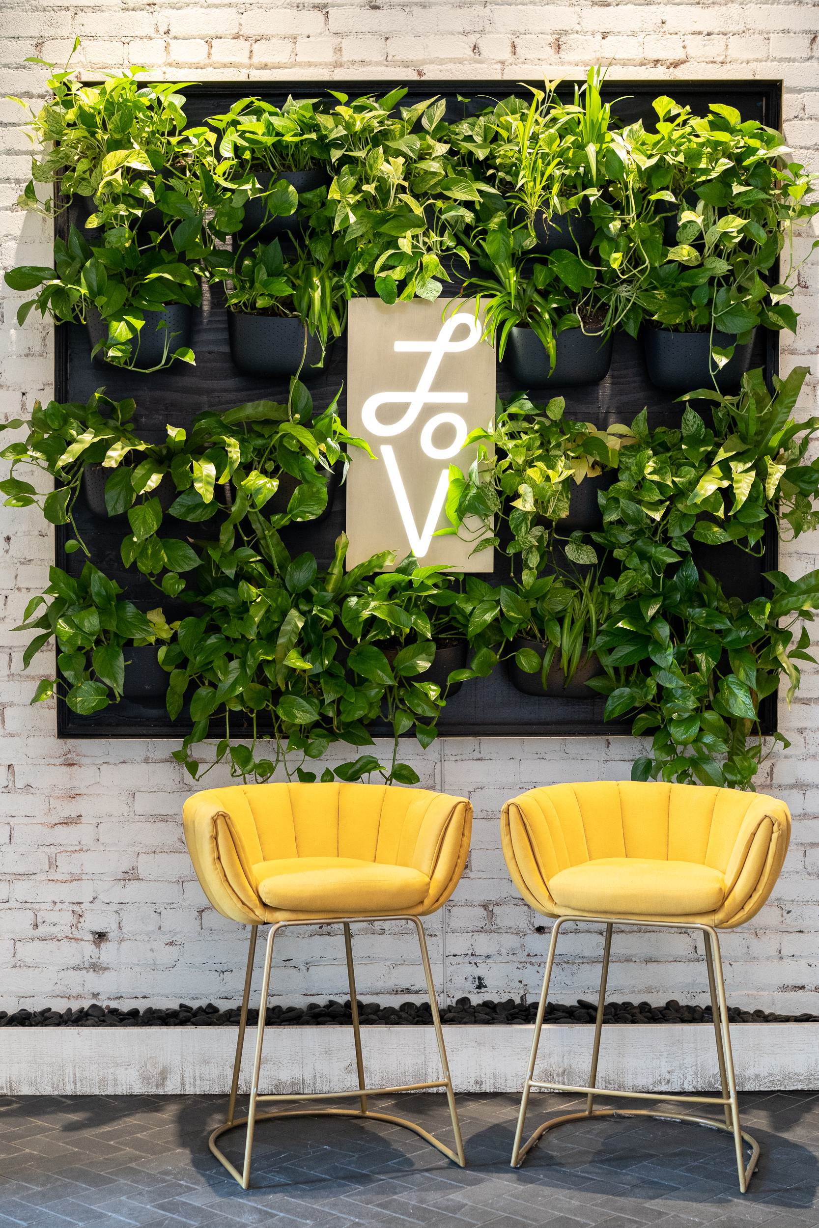 Who doesn't want to be welcomed by lush greens and punchy yellow bar stools?