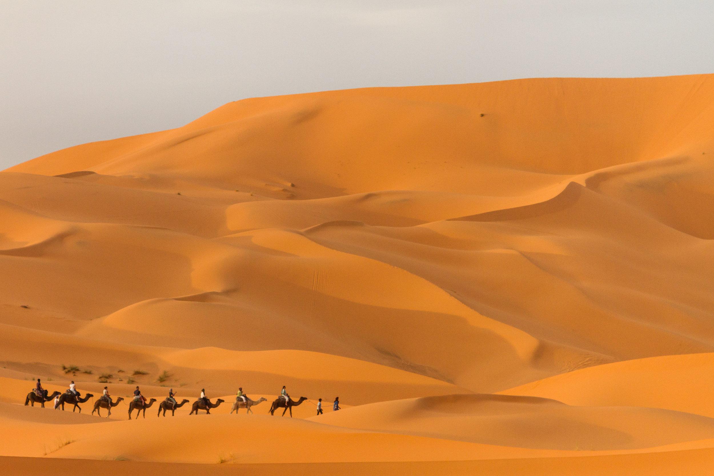 Camel riders trekking through the Cherg Ebbi Desert