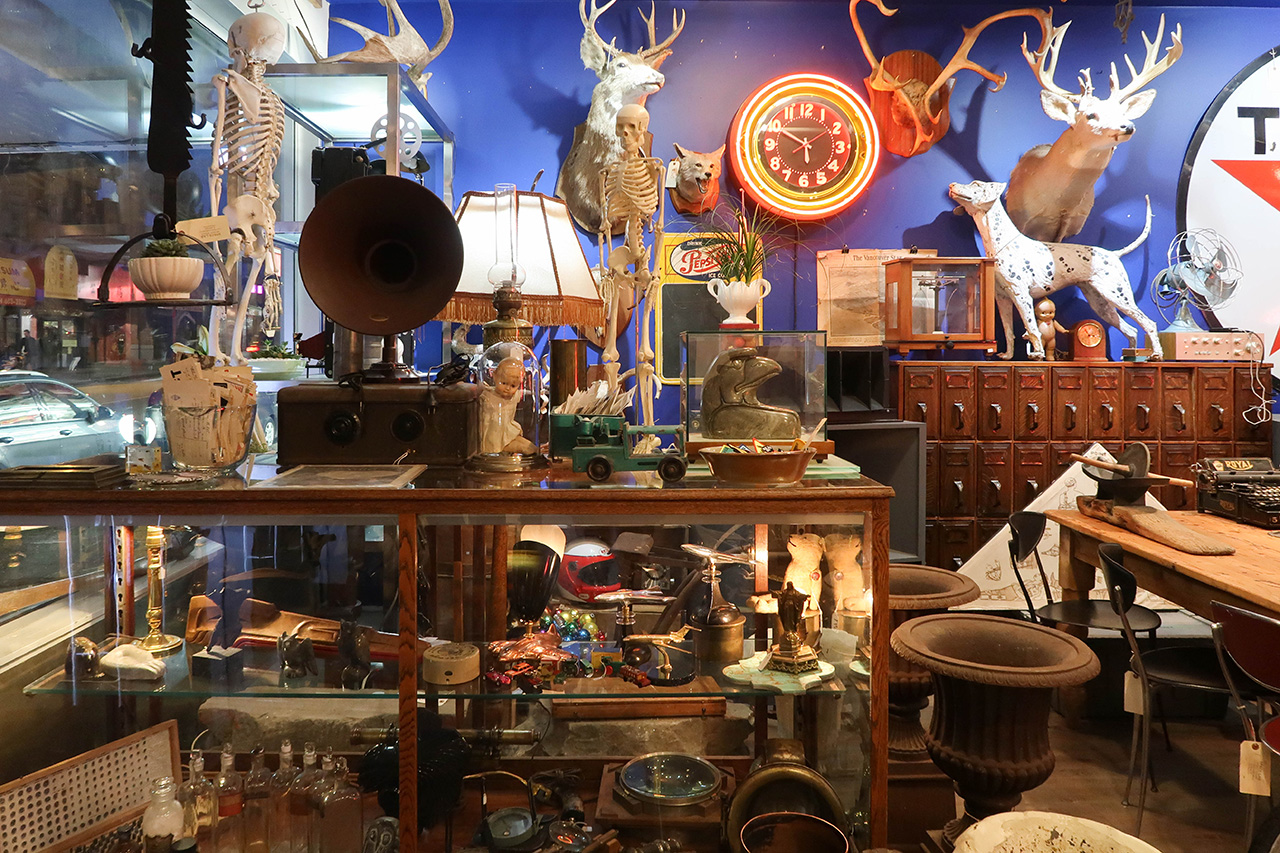 The vintage shop filled with unique collectibles parallel to the coffee bar.
