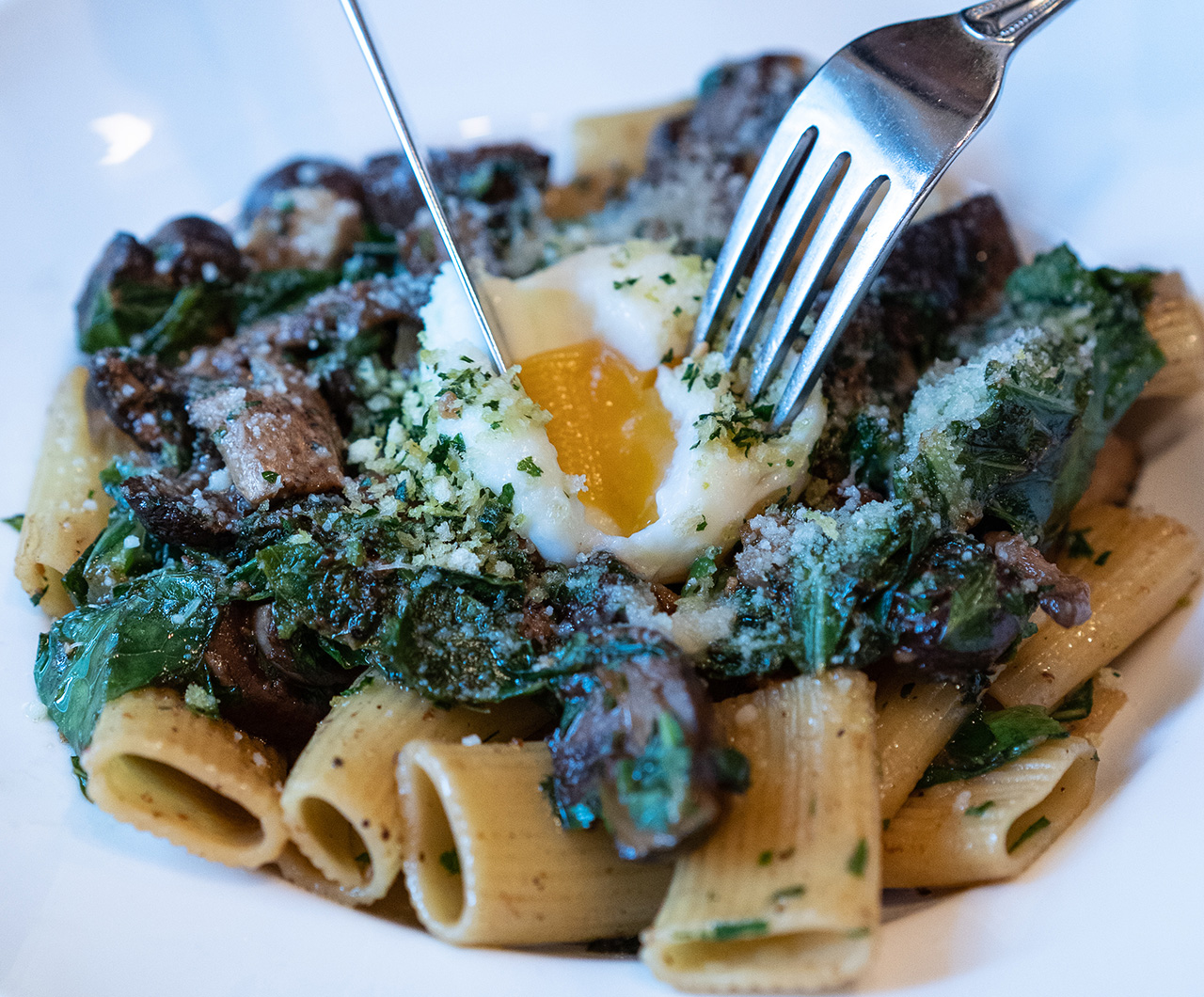 A close up of the creamy pasta,