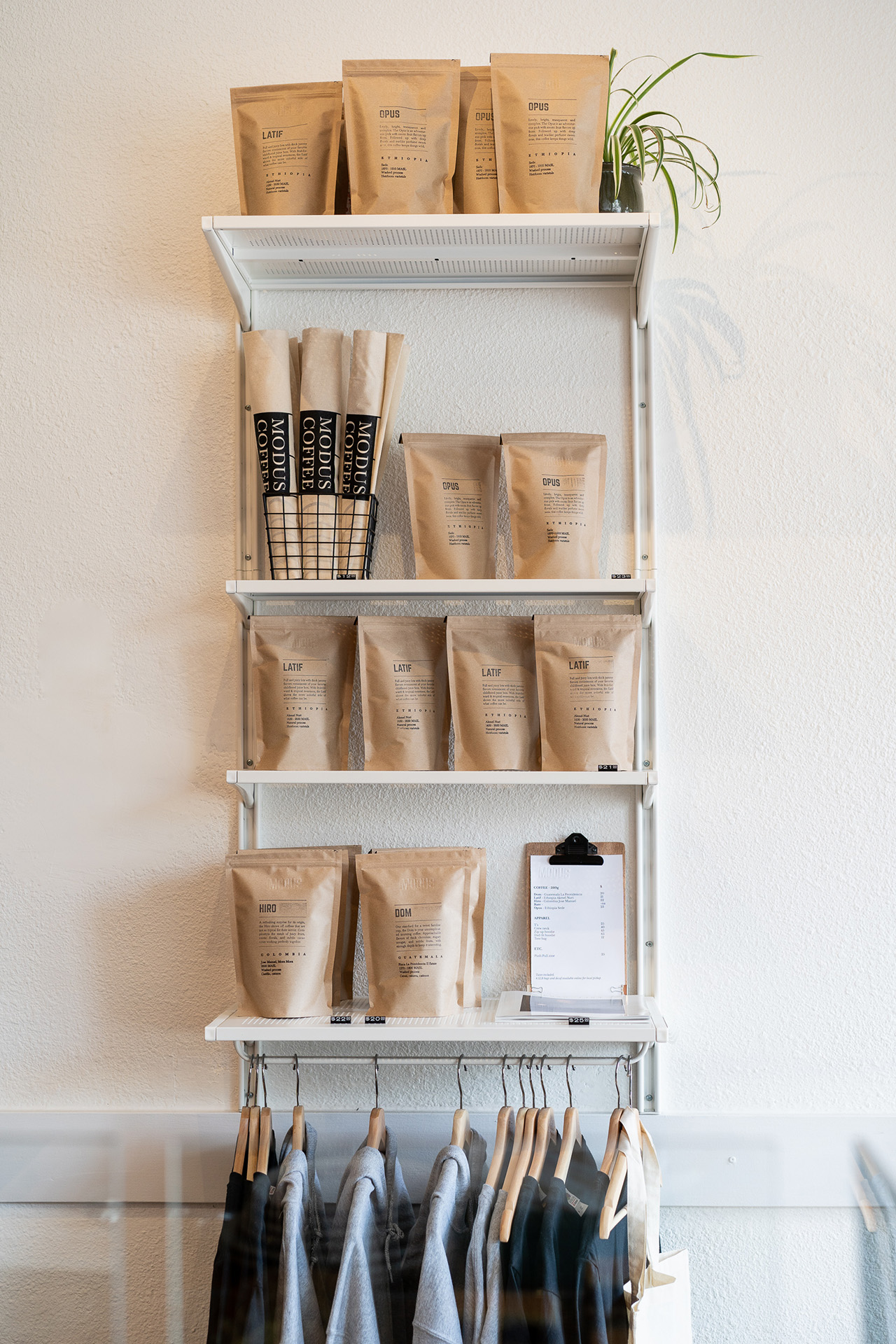 Modus Coffee Roasters West Broadway X Pendulum Magazine