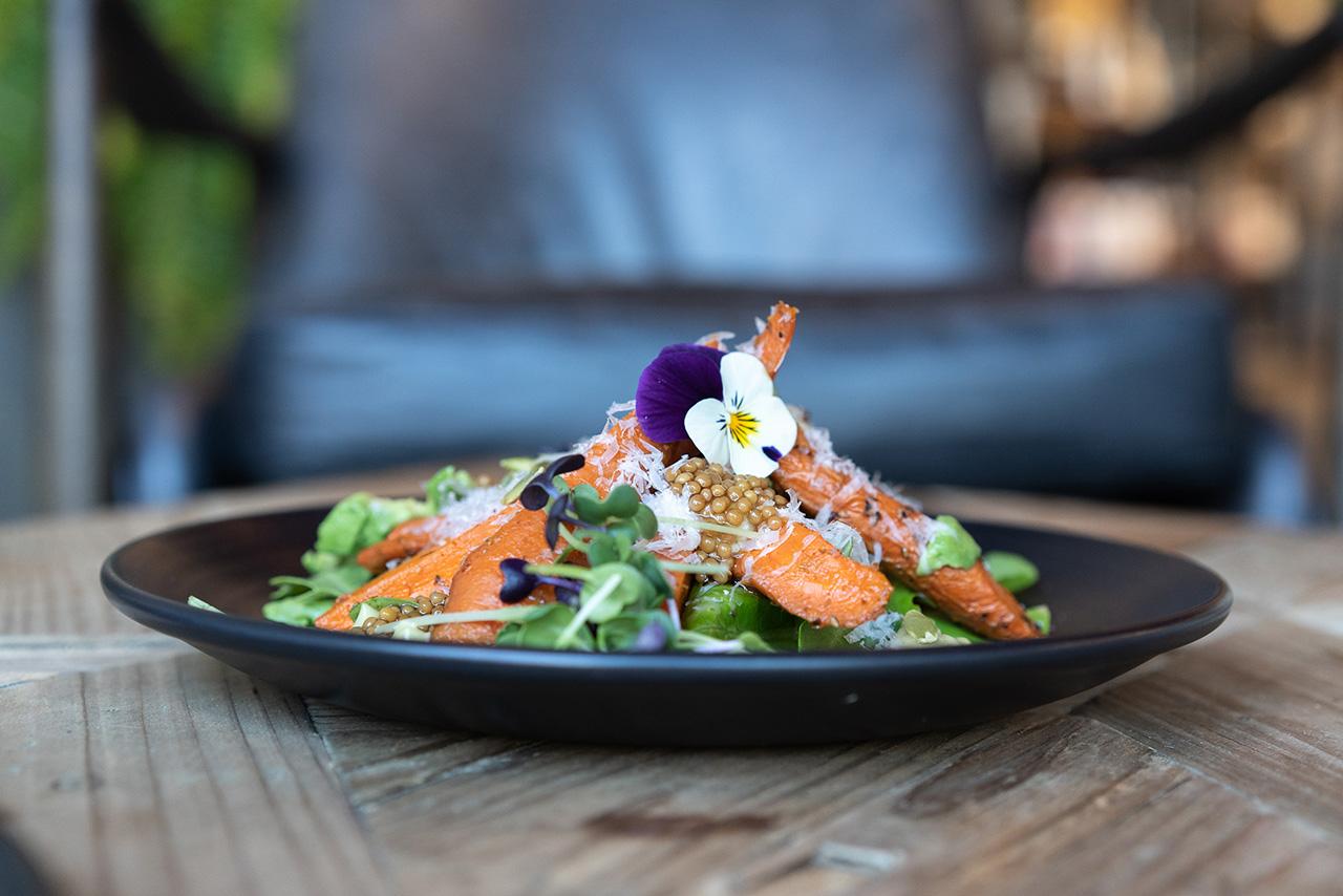 Roasted carrot salad: avocado cream, pecorino romano, pumpkin seeds, pickled mustard, honey, herbs.