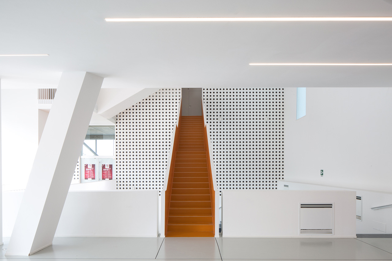 The porous interiors are in stark contrast to the solid white walls.