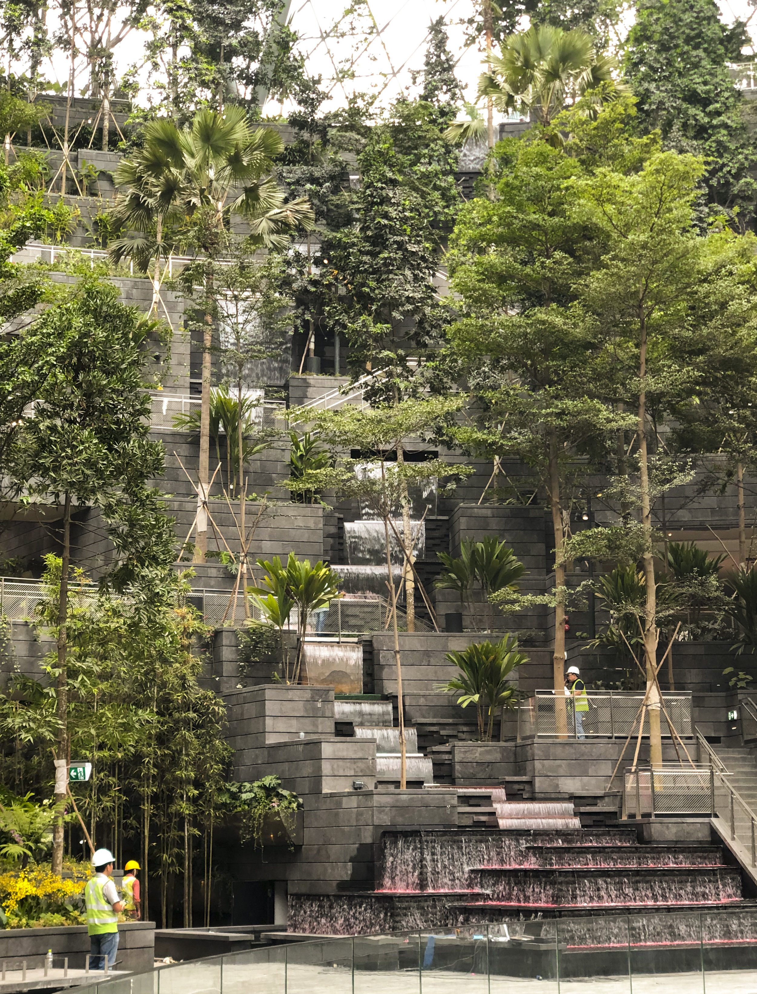 Cascading waterfall and over 200 species of plants create an indoor rainforest for visitors.