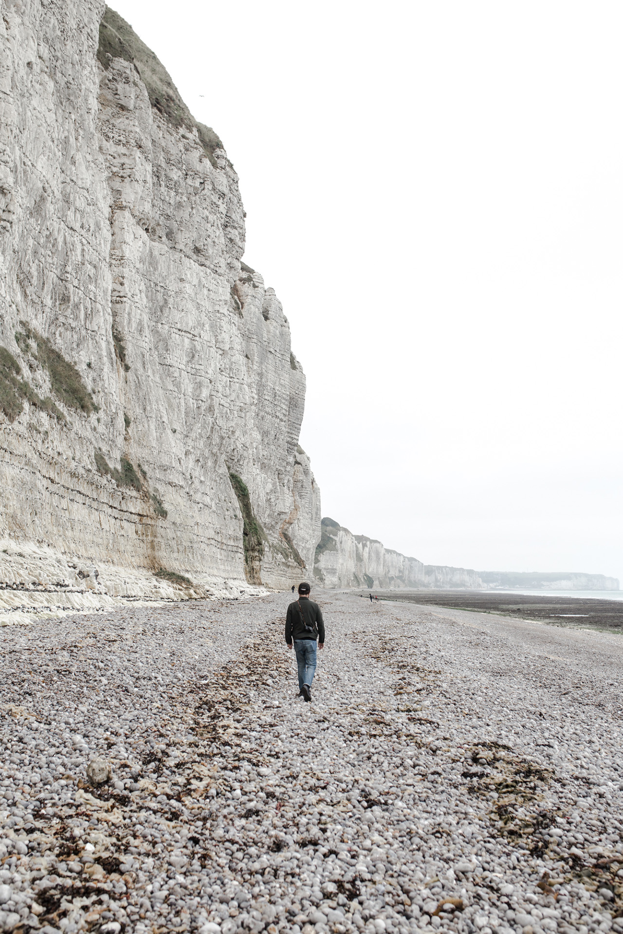Along the cliff - searching fossils