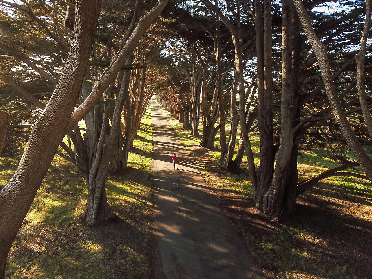 Running at Cypress Tree Tunnel.