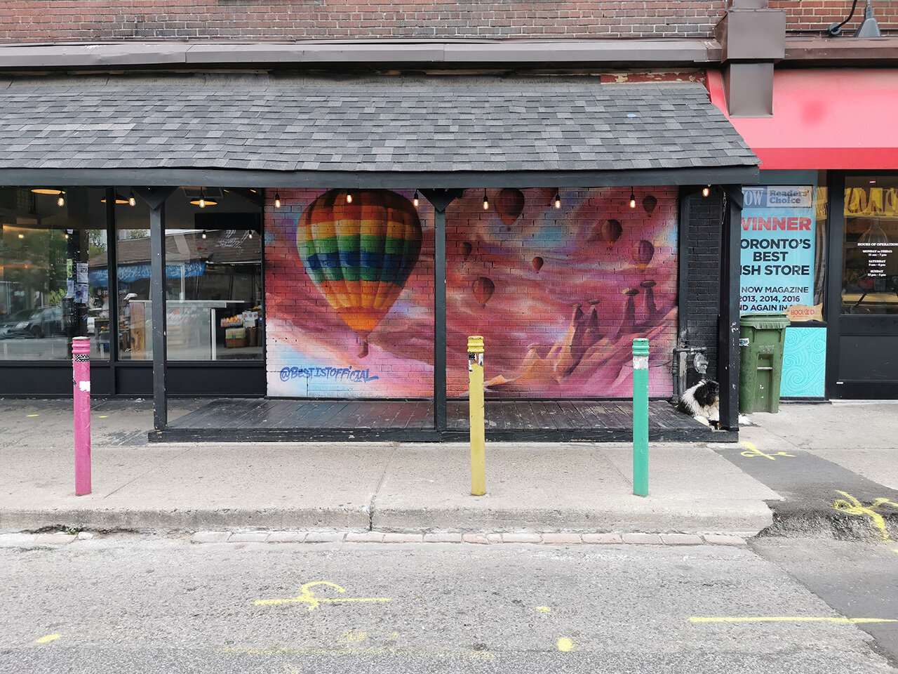 Hot air balloon wall art paired with multi-coloured street posts. Do you spot the puppy hanging out in this photo?