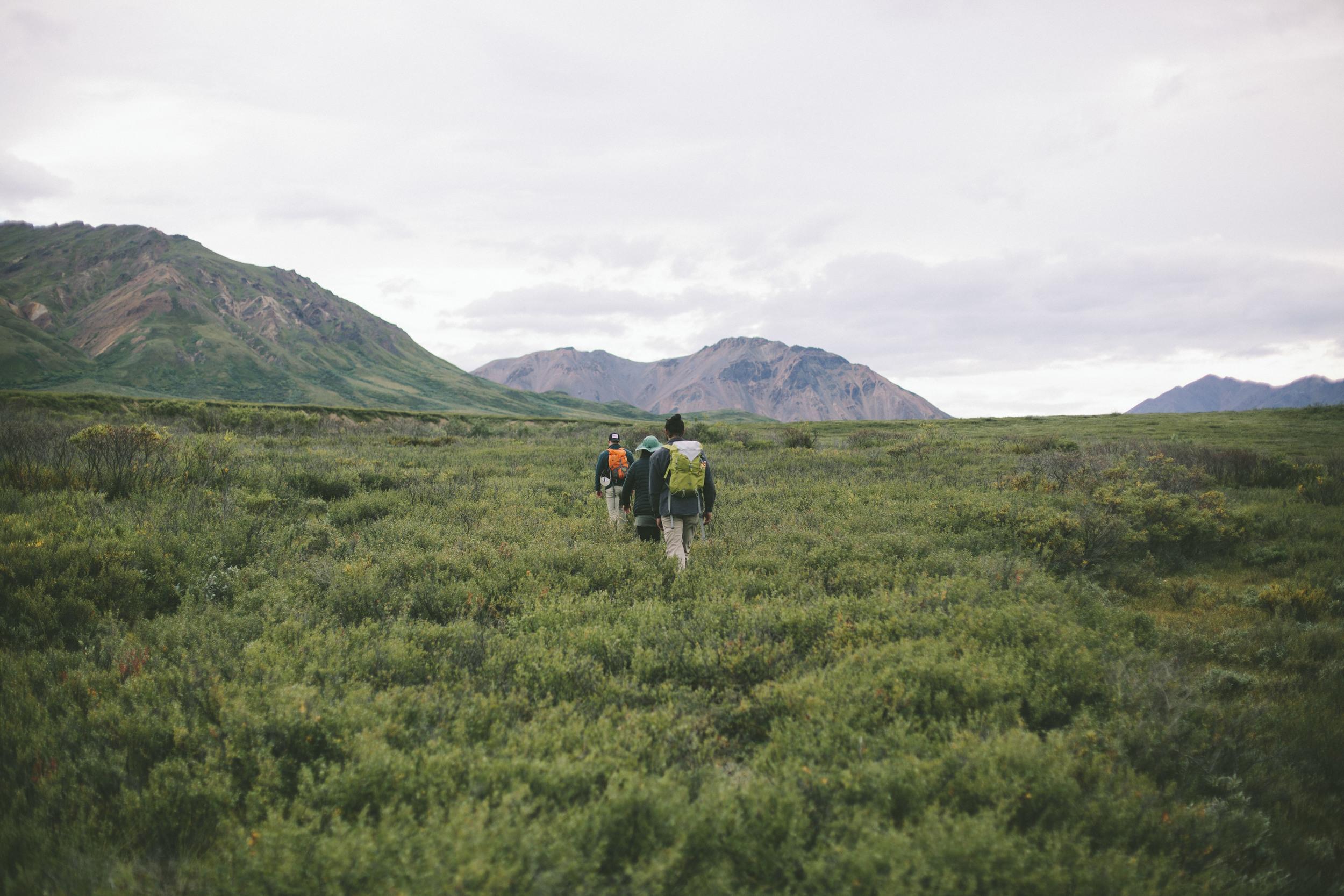 Alaskaprint2.jpg