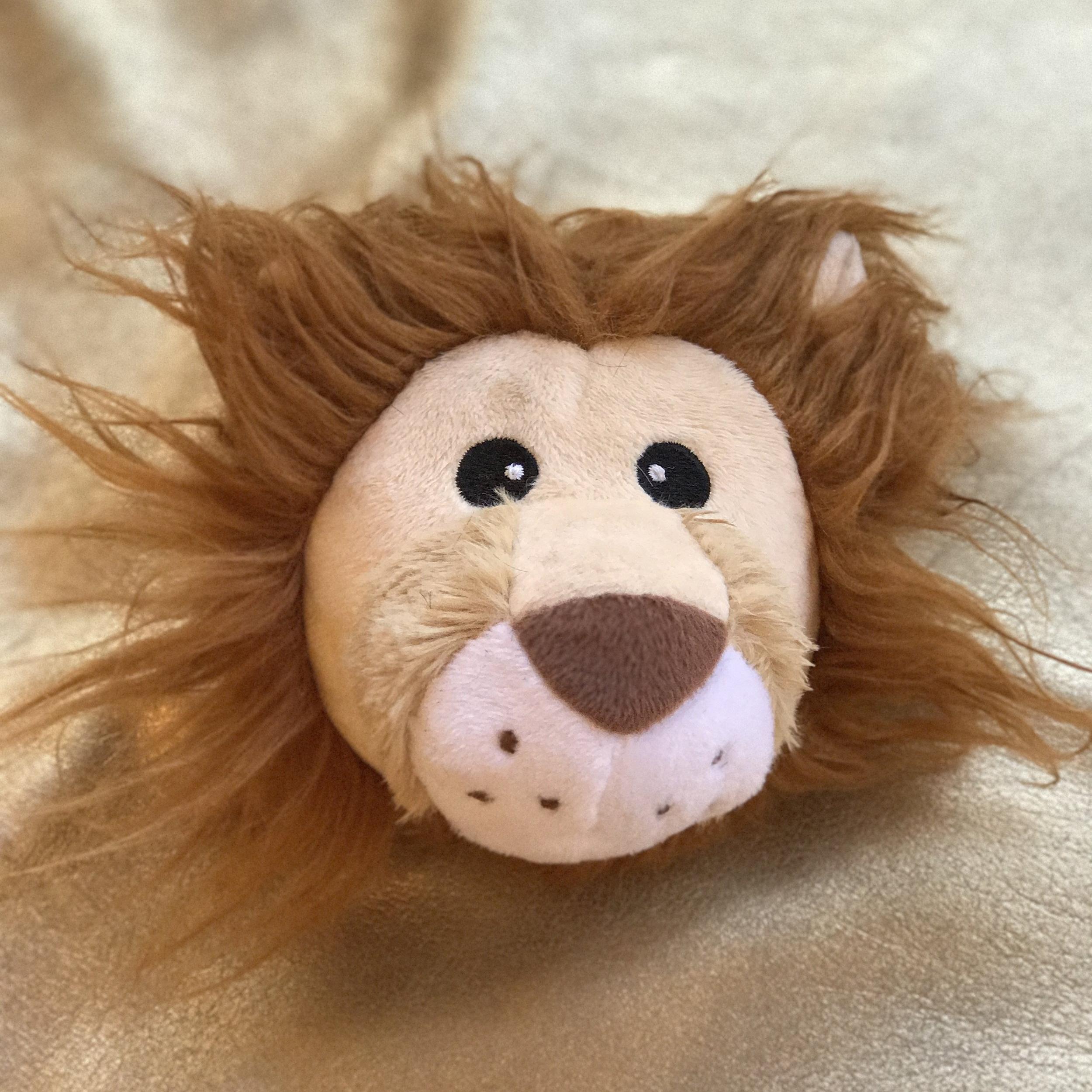 madigan_lionhead