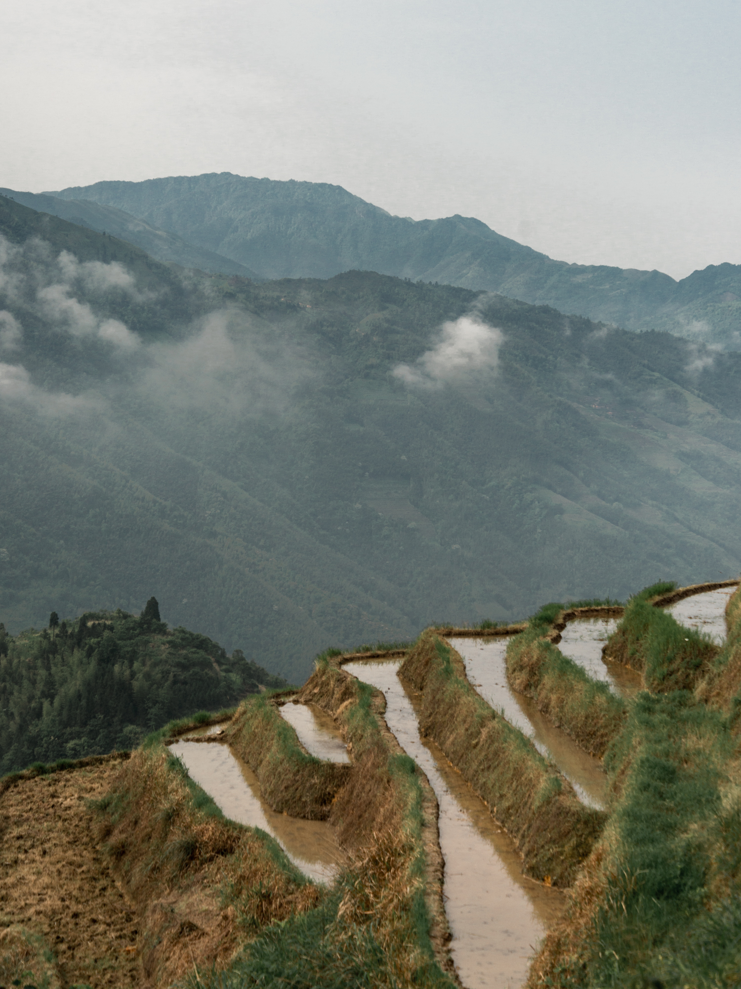 Leda Costa Yangshuo Longsheng China 8.jpg