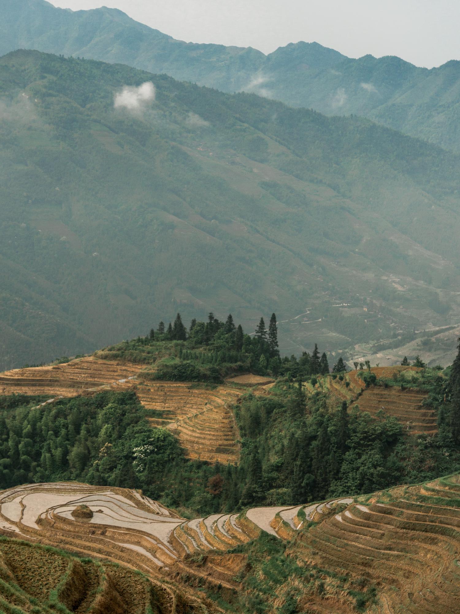 Leda Costa Yangshuo Longsheng China 9.jpg