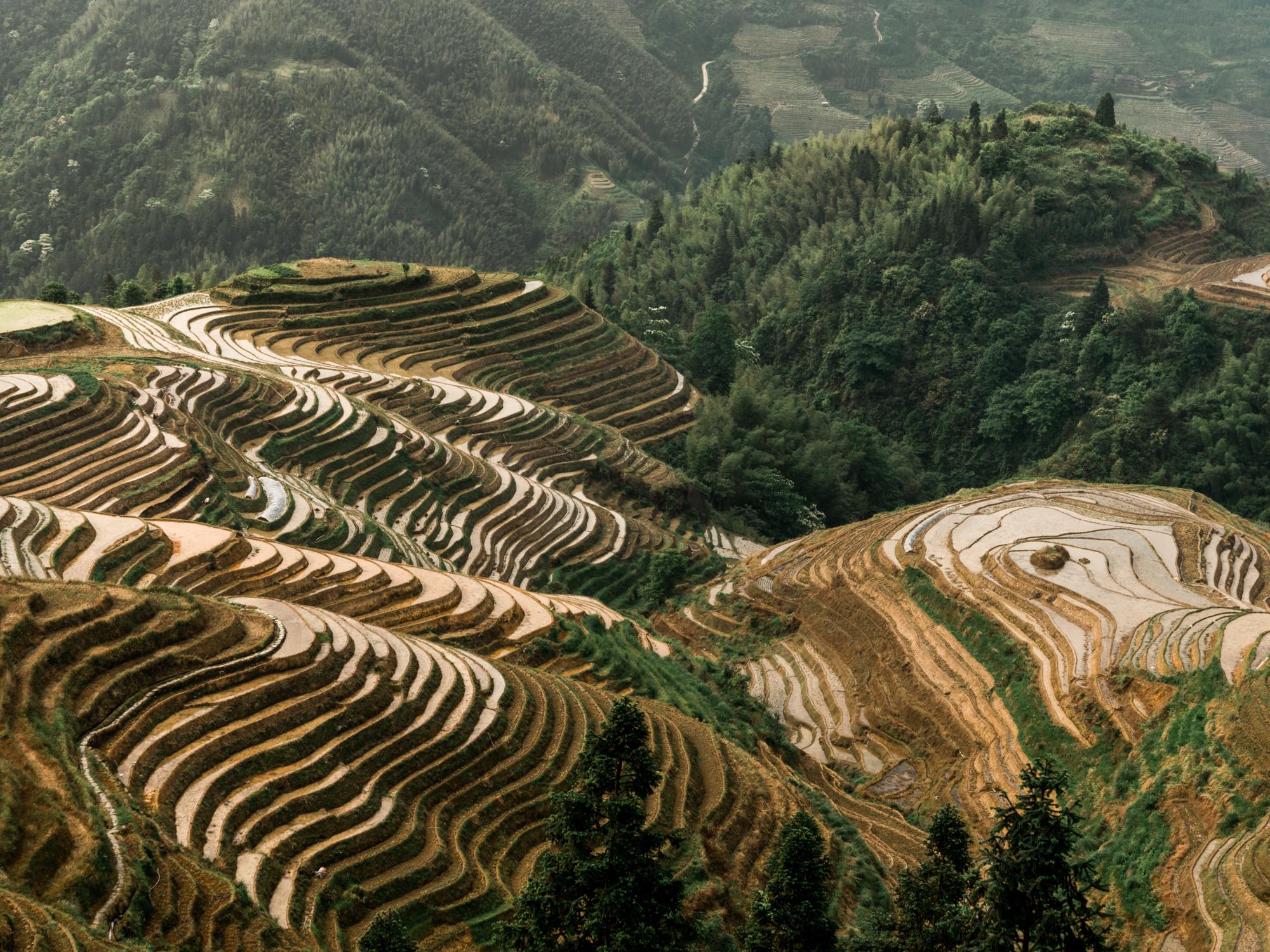 Leda Costa Yangshuo Longsheng China 10.jpg