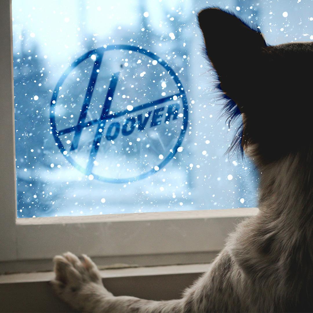 HooverLogoAdventures1.26.18.jpg