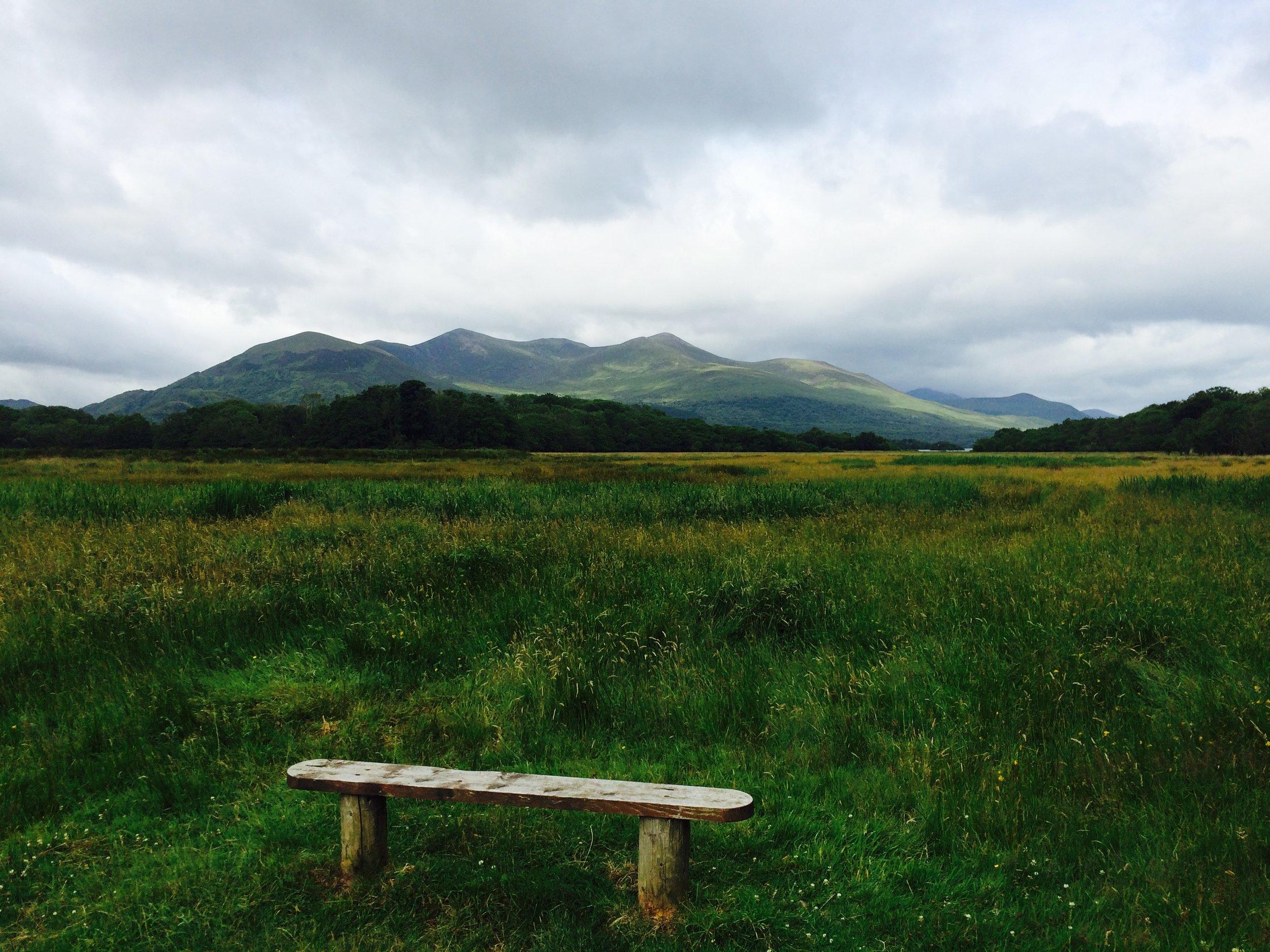 Killarney Trail Stop