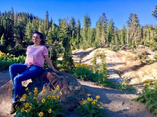 Wildflowers at Lassen National Park