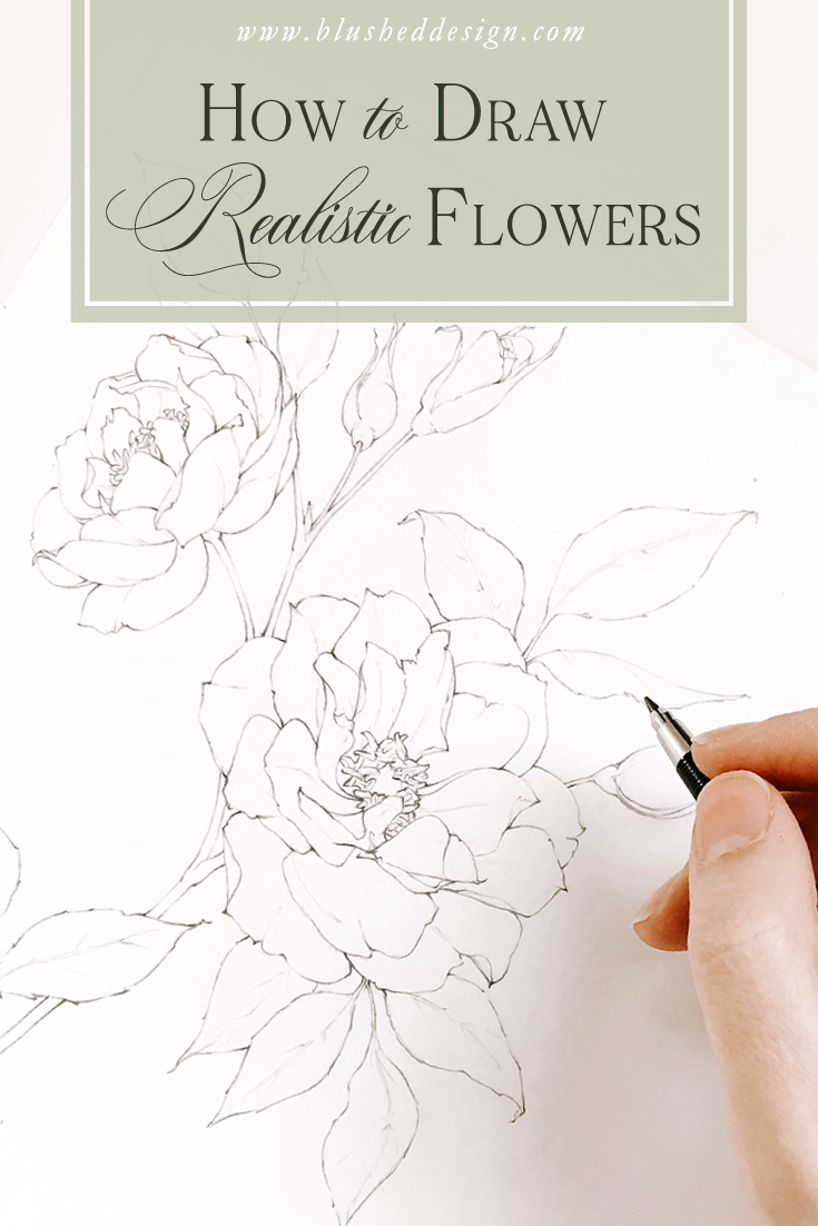 Learn how to draw beautiful, realistic flowers in this 5 day drawing challenge, where I'll share 5 of my favorite drawing tips and tricks with you!  We'll practice drawing florals, gain some confidence and make some friends along the way! #floraldrawingchallenge #howtodraw #howtodrawflowers #floralillustrations