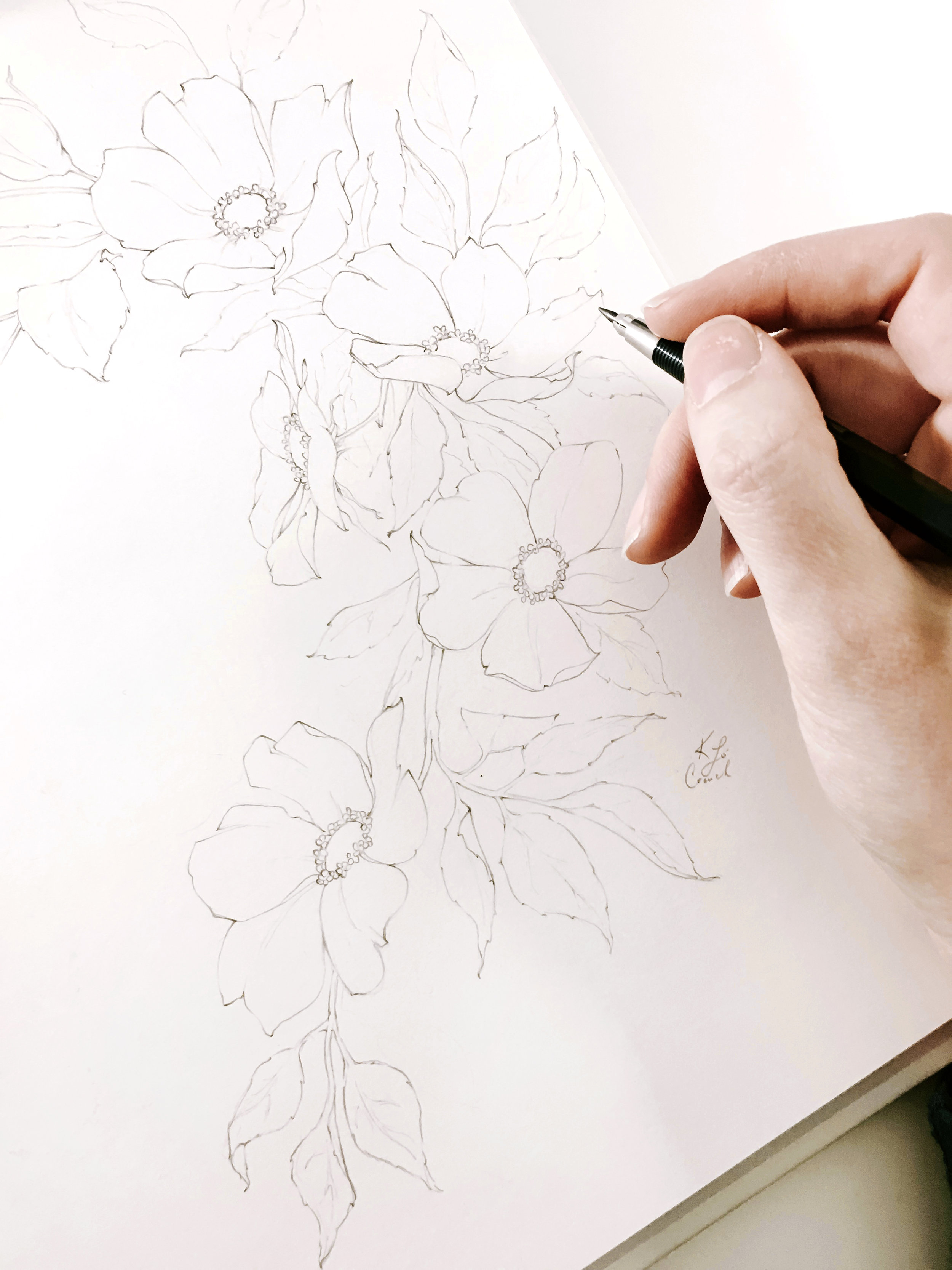 Learn how to draw whimsical and organic florals in my tutorials!