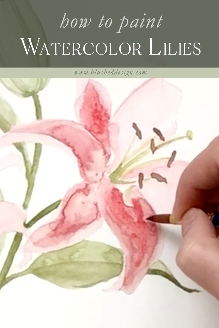 Watercolor lily tutorial!  Come behind the scenes with me while I paint these beautiful lilies in a loose, modern watercolor style—watch the second half to see how I transform this loose watercolor style into something a little more realistic.. #modernwatercolor #loosewatercolortutorial #watercolortutorial #watercolorflowers #watercolorlilies