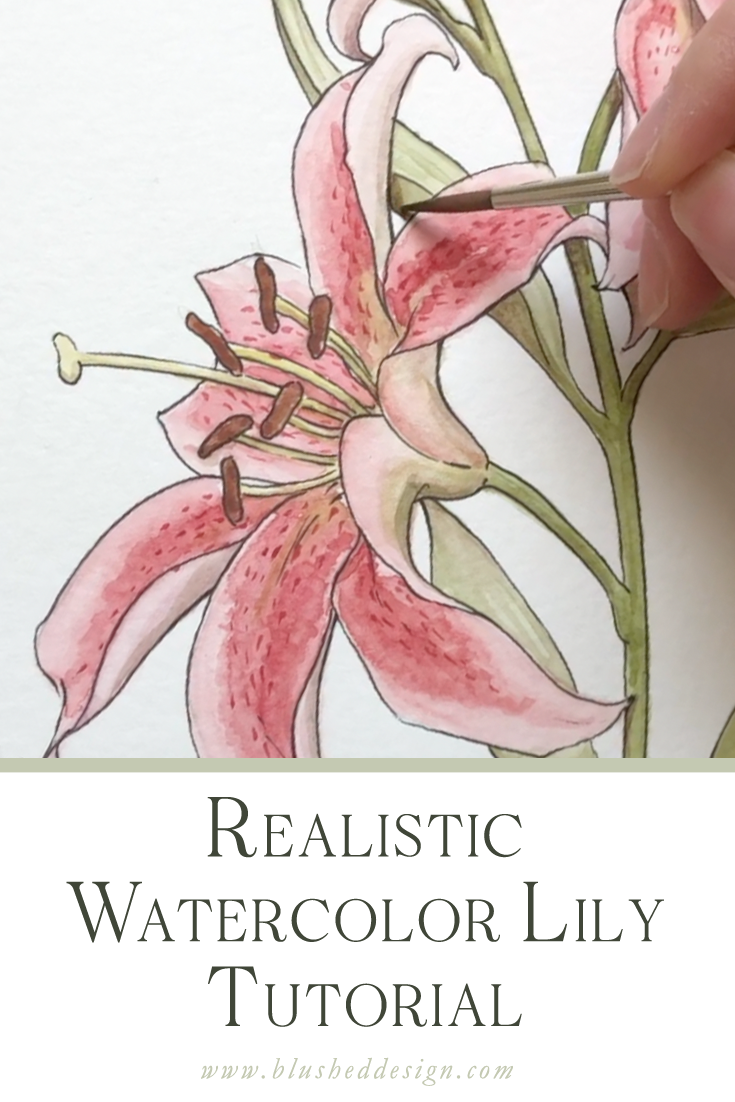 Want to learn how to create realistic, beautiful watercolor flowers? Watch as I take a loose watercolor flower and add strategic details in order to create a beautiful, realistic bloom.  Watch both watercolor flower tutorial videos #realisticwatercolorflowers #howtowatercolorflowers #watercolorflowertutorials #realisticwatercolorflowertutorial