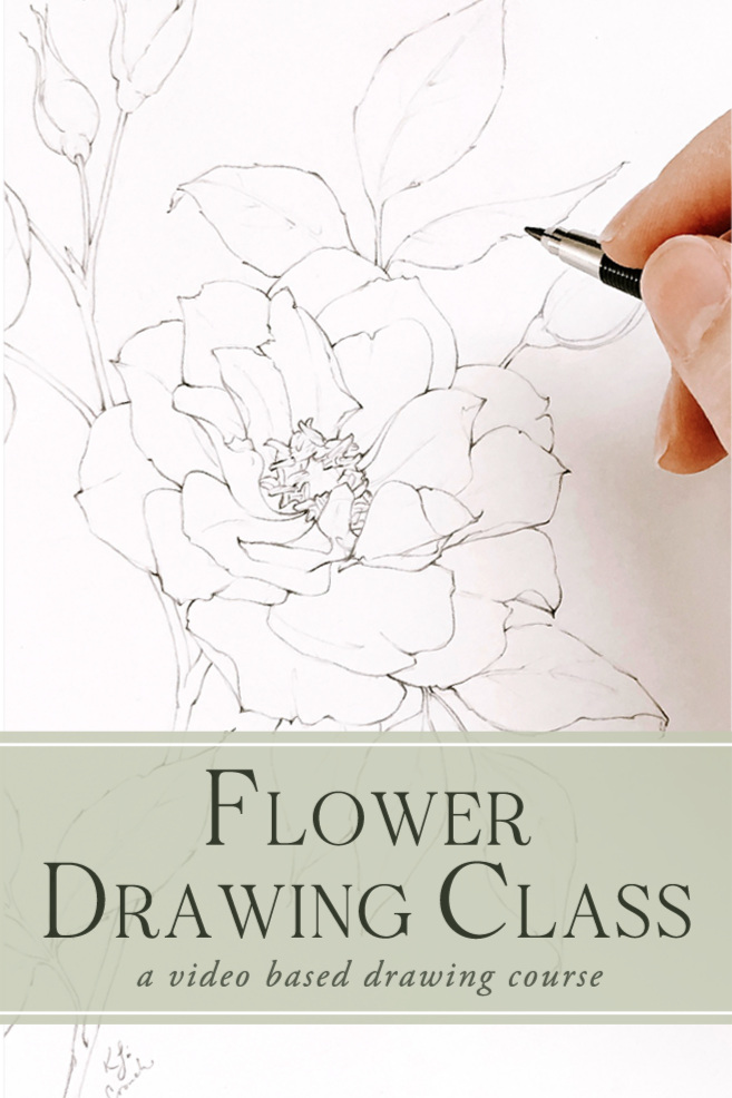 Learn+to+draw+realistic+flowers+with+this+video+tutorial+series%21++Come+behind+the+scenes+with+me+and+learn+from+my+step+by+step+flower+drawing+process%21++Tested%2C+proven+and+my+BEST+SELLER%21+%23flowerdrawing+%23howtodrawrealisticflowers+%23howtodrawflowers