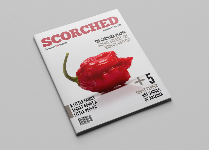 Scorched-Cover.jpg