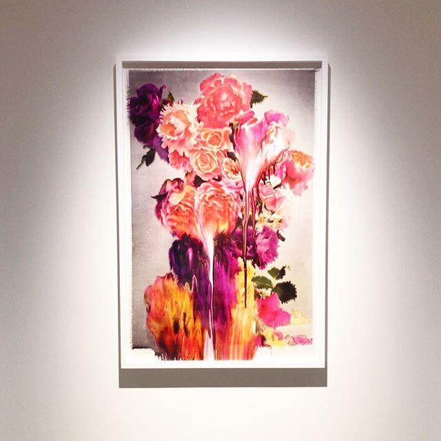 【 nick knight 】  #nickknight #omotesando  #個展 #flower #art