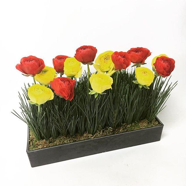 【 gift arrangement 】  spring / japanase modern   #flower #giftarrangement #spring #ラナンキュラス #和モダン #japanasemodern #cabbegeflowerstyling