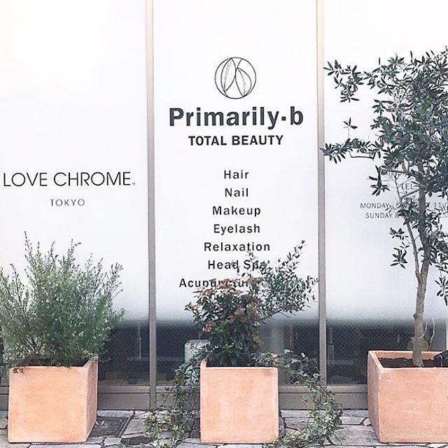 【 green coordinate 】  表参道 Plimarily-bさま。  ファサードのグリーンコーディネートを 担当させていただきました。   既存の植物🌿を活かして より大人っぽくナチュラルな雰囲気に。   春になじんでくるのが たのしみです。  @shimojimac ありがとうございます。  #グリーンコーディネート #表参道 #プライマリービー #ラブクロム #lovechrome #植物  #フラワーブランディング  #cabbegeflowerstyling